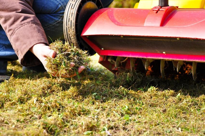 Die Optima Rasenpflege beinhaltet: Aerifizieren, düngen, kalken, nachsähen und regelmäßig vertikutieren !